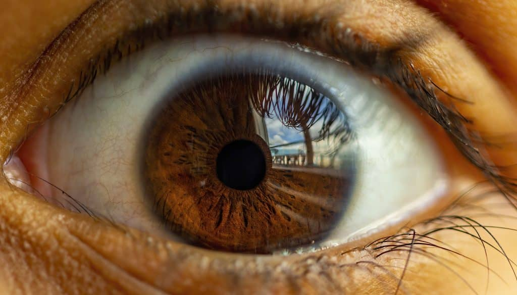 Eye Reflection 2