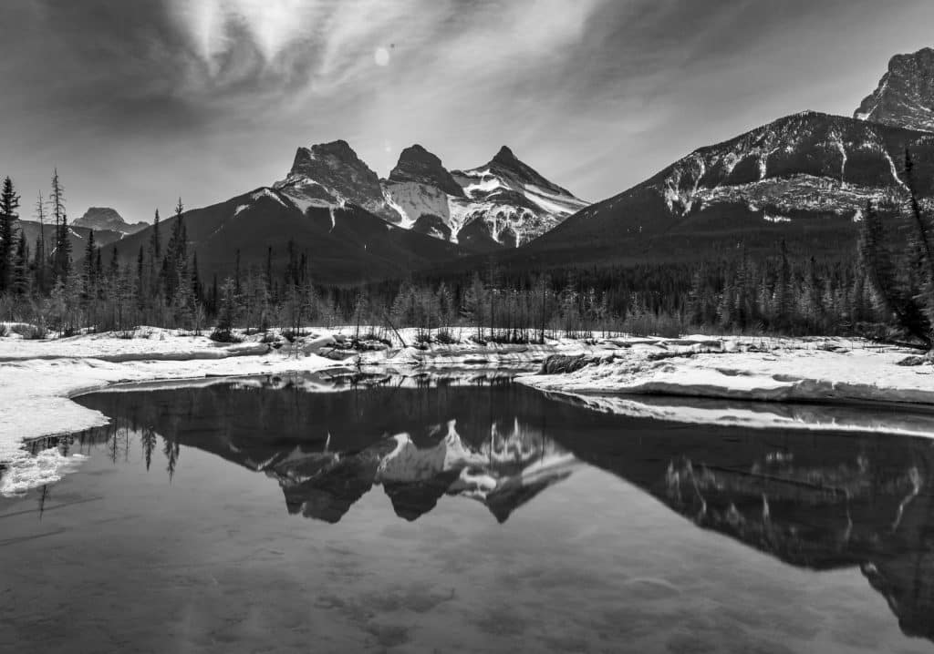 Black and white three sisters